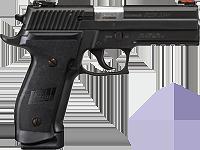 Waffenkoffer mit Ersatzmagazin für Kurzwaffe Pistole Sig Sauer 1911 STAINLESS TARGET rechts Waffenstube Thalkirchen München Bayern Deutschland